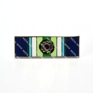 South Atlantic 1982 Falklands War Medal with Rosette